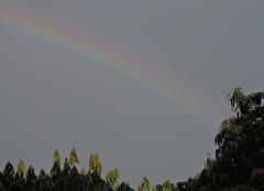 A rainbow over Thekkady