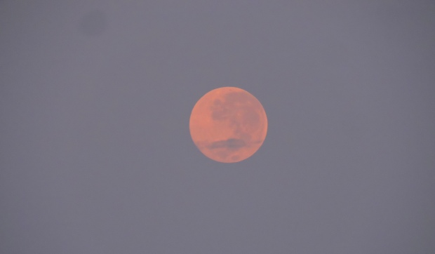 Full Moon, Chennai