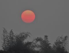 Sunrise in Chennai